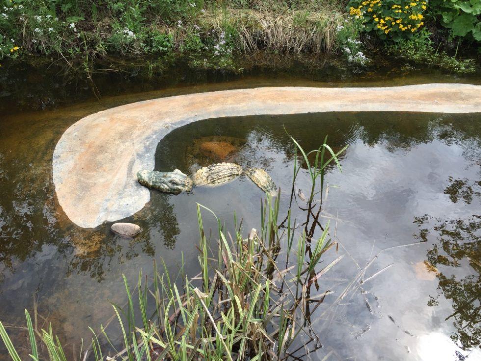 Mycket fina vattenskapelser finns att se i Bäsna.